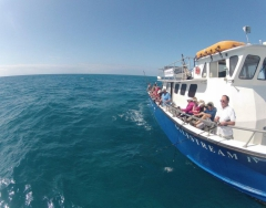 Gulfstream Fishing Party Boat