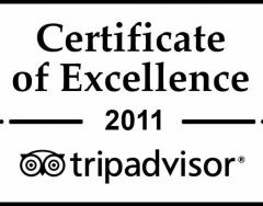 excellence-badge_en