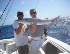 barracuda-kwft2011