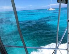 7-3-reef