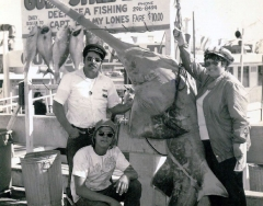 A 550 pound sawfish caught on the charter boat Gulf Stream II. Photo from Dale McDonald Collection.