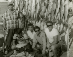 A large catch made on a Key West charterboat C 1968. Photo by Wil-Art Studio from the collection of Angie Marine.