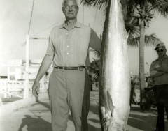A large kingfish caught on a Key West charterboat C 1968. Photo by Wil-Art Studio from the collection of Angie Marine.