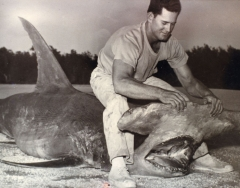 Fishing guide Roy Lowe with shark. Photo from Erma Stout's scrapbooks.