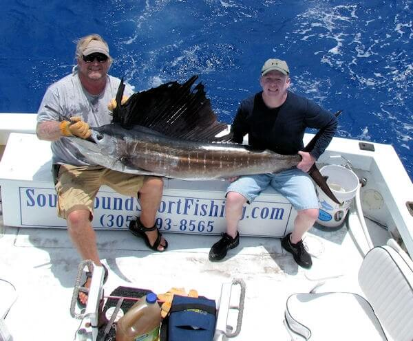 sailfish caught on the Southbound