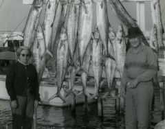 A man and woman with a large catch of king fish caught on the charterboat Sandy Bill II Captain bill wickers C 1968. Photo by Wil-Art Studio from the collection of Angie Marine.
